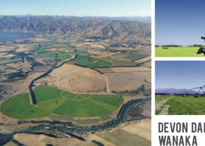 DEVON DAIRY FARMS